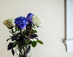 Random act of roses